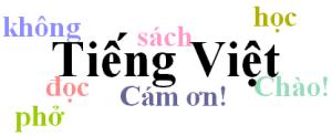4-fastest-ways-to-learn-vietnamese